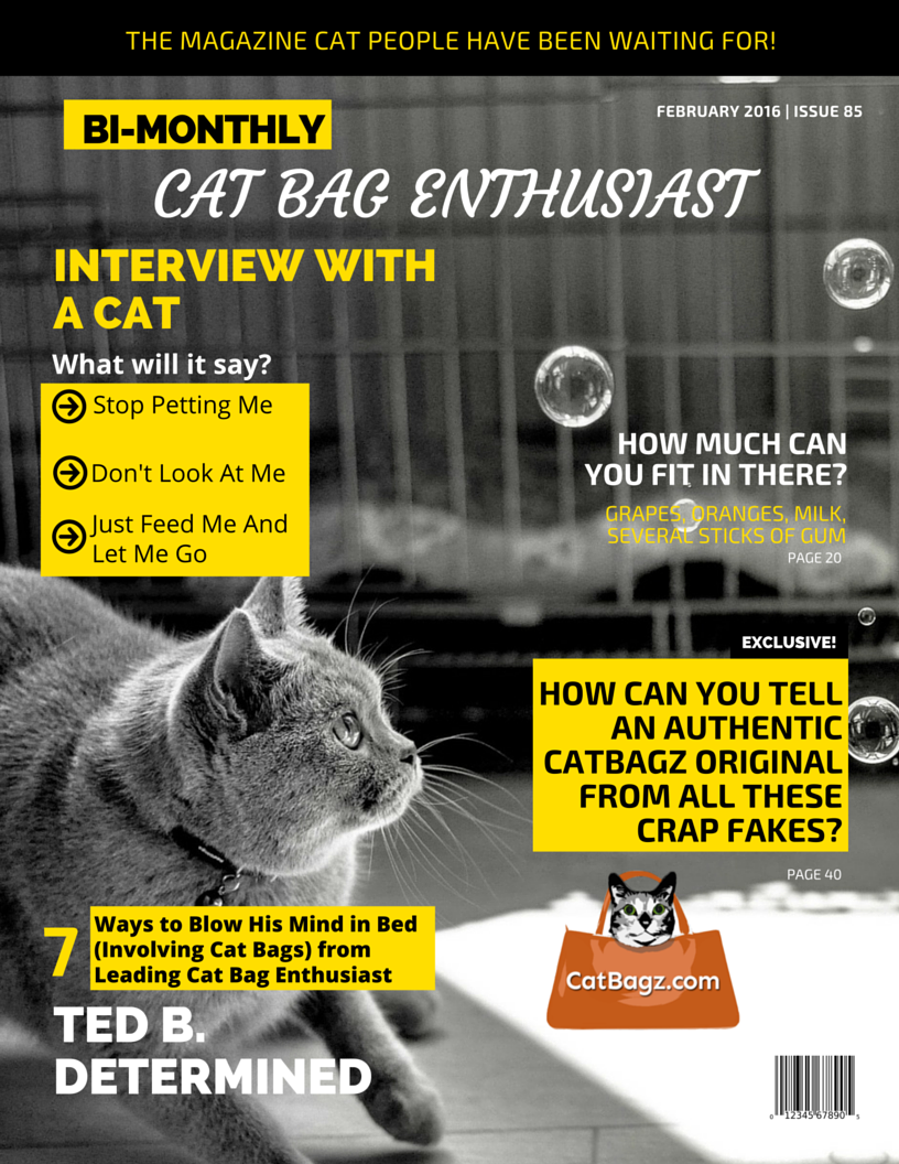 Cat Bag Enthusiast Magazine is the largest and most circulated magazine featuring content from major cat bag enthusiasts everywhere.