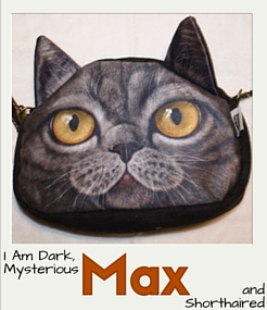 Max is Dark, Mysterious, and Shorthaired.