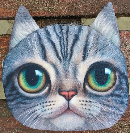 Cat Faced Chain Bag Sam Style