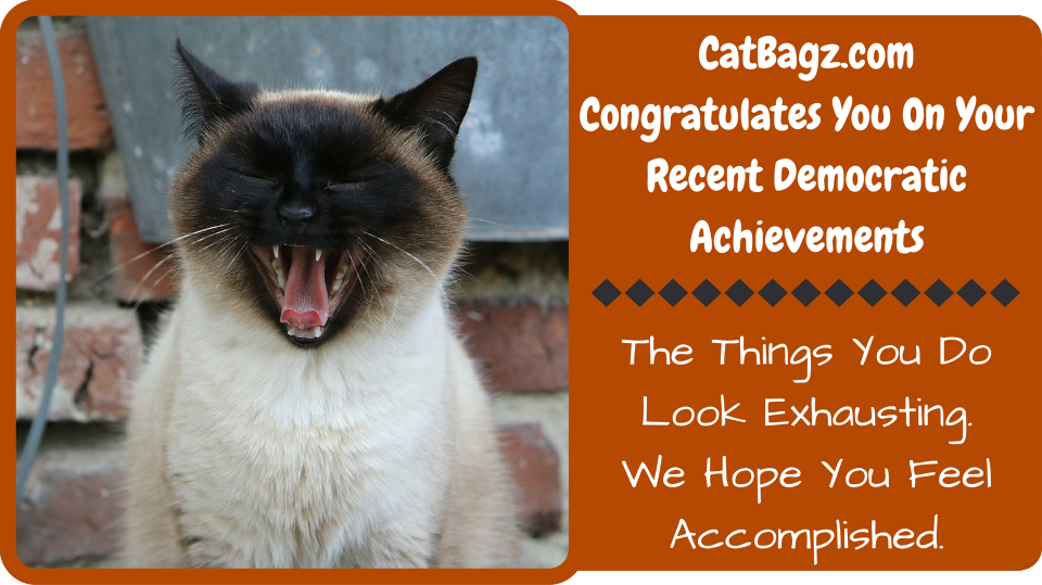 CatBagz.com Congraulation You On Your Recent Democratic Success