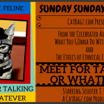 What has Scooter been up to? Introducing Scooter T. Felines MEET FOR TALKING OR WHATEVER seminar and self-serve dutch brunch.