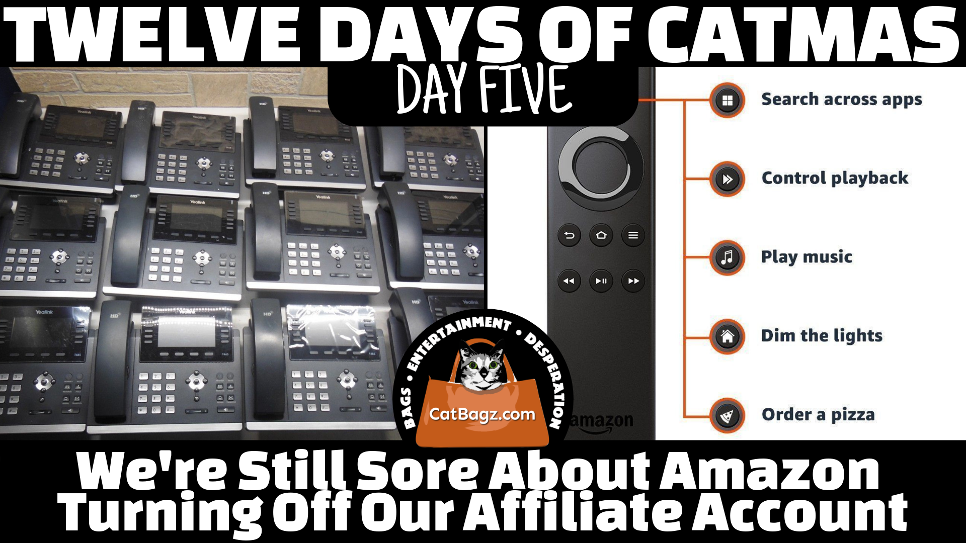 Twelve Days of Catmas - Day Five - We're still sore about Amazon turning off our affiliate account.