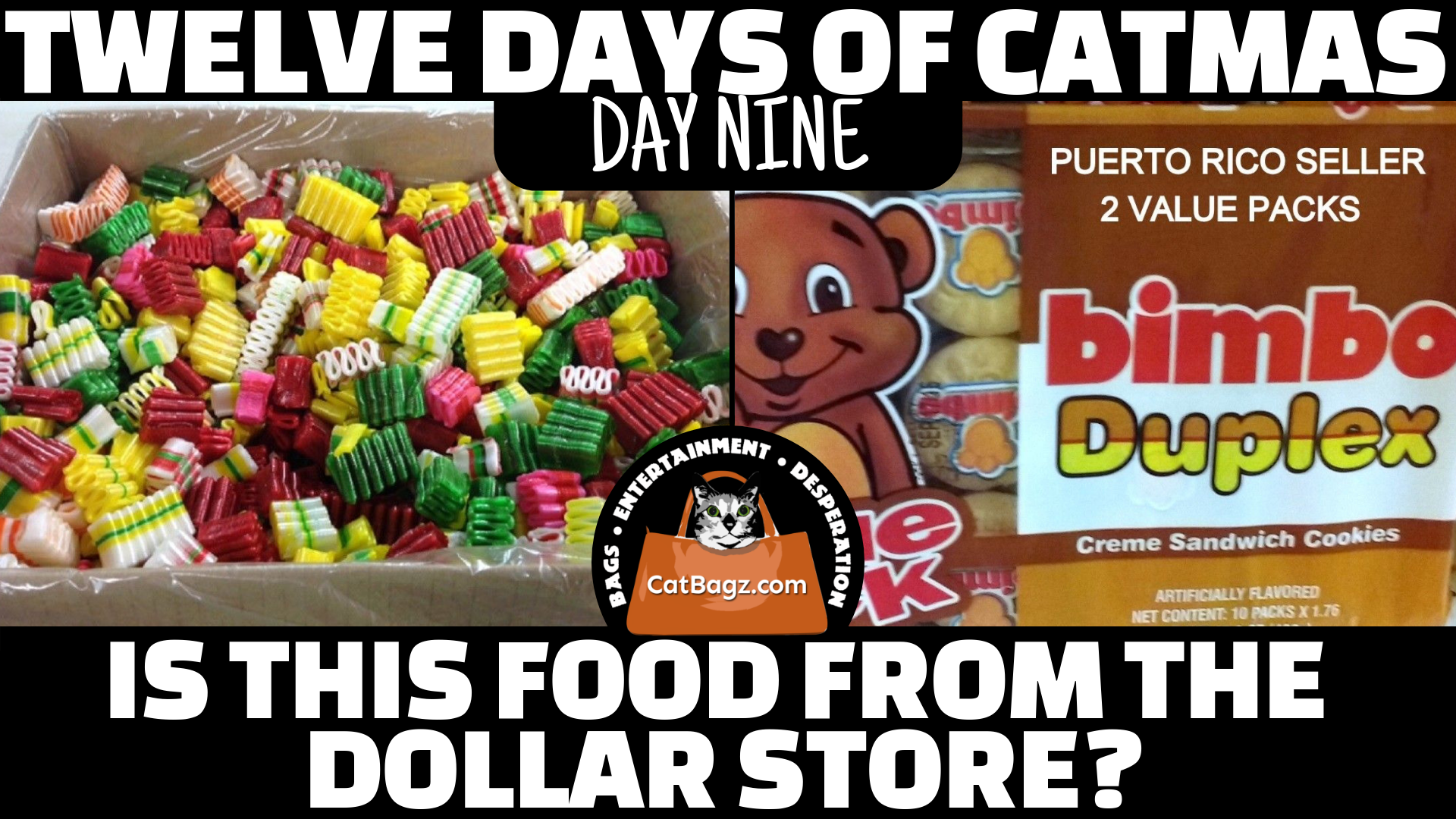Twelve Days of Catmas - Day Nine - Is This Food From The Dollar Store